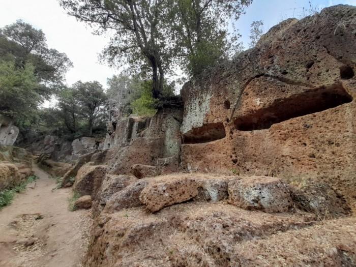 Archeotrekking Etrusco a Cerveteri